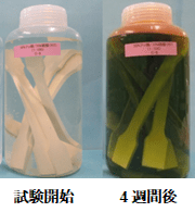 Oリングや樹脂部品の薬液に対する耐性試験を確実に実施する方法!  ダンベル試験