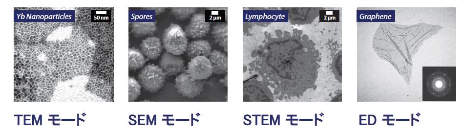 TEM/SEM/STEM/ED